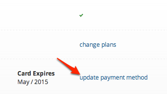 Update Payment